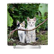 Wild Kats Shower Curtain