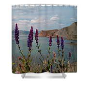 Wild Lupines Shower Curtain