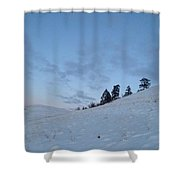 Wild Majesty Shower Curtain