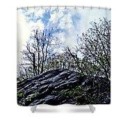 Wild Manhattan 4 Shower Curtain