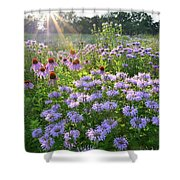 Wild Mints And Coneflowers Shower Curtain