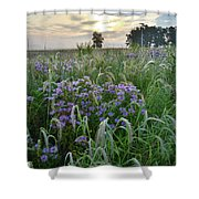 Wild Mints And Foxtail Grasses At Glacial Park Shower Curtain