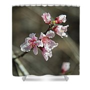 Wild Mountain Blossoms Shower Curtain