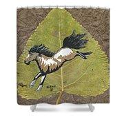 Wild Mustang #3 Shower Curtain