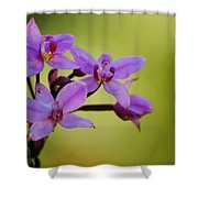 Wild Orchids 2 Shower Curtain