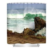Wild Pacific Two Shower Curtain