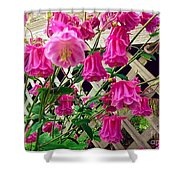 Wild Pink Beauty Shower Curtain