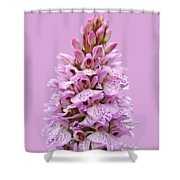 Wild Pink Spotted Orchid Shower Curtain