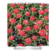 Passion Print Shower Curtain