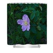 Wild Rose 6 Shower Curtain