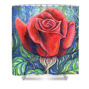 Wild Rose One Shower Curtain