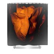 Wild Rose Shower Curtain