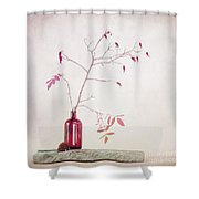 Wild Rosehips In A Bottle Shower Curtain