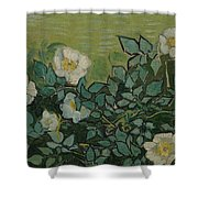 Wild Roses Saint-remy-de-provence, May-june 1889 Vincent Van Gogh 1853 - 1890 Shower Curtain