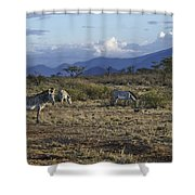 Wild Samburu Shower Curtain