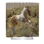 Wild Spirit Shower Curtain