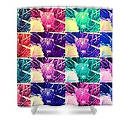 Wild Strawberry In Different Flavors Shower Curtain