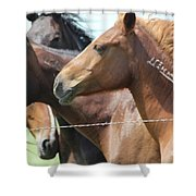 Wild Thang Shower Curtain