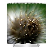 Wild Thing Shower Curtain by Lois Bryan