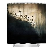 Wild Things - Number 1 Shower Curtain