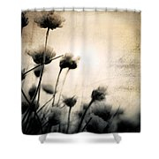 Wild Things - Number 3 Shower Curtain