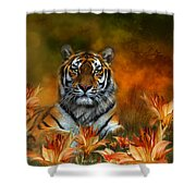 Wild Tigers Shower Curtain