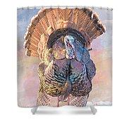 Wild Tom Turkey Shower Curtain