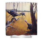 Wild Turkeys Shower Curtain