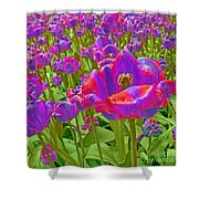 Wild Version Pink And Purple Tulips Shower Curtain