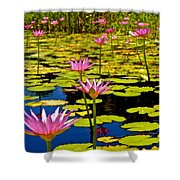 Wild Water Lilies 3 Shower Curtain