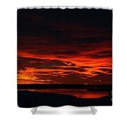 Wild Winter Sunset Shower Curtain
