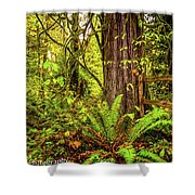 Wild Wonder In The Woods Shower Curtain