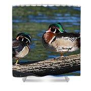 Wild Wood Ducks On A Log Shower Curtain