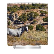 Wild Wyoming Shower Curtain