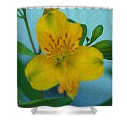 Wild Yellow Lilly Shower Curtain