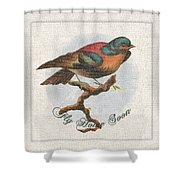 Wildcraft Bird Print On Linen Shower Curtain