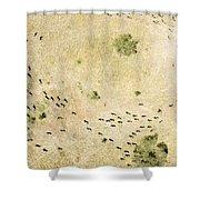 Wildebeest Disperse Over The Serengeti Shower Curtain