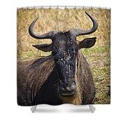 Wildebeest Taking A Break Shower Curtain
