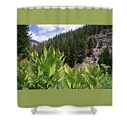 Wilderness Expedition Shower Curtain