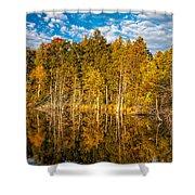 Wilderness Pond 3 Shower Curtain