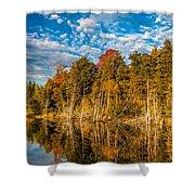 Wilderness Pond  Shower Curtain