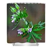 Wildflower 2 Shower Curtain