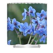Wildflower 8 Shower Curtain