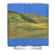 Wildflower Display - Salisbury Potrero Shower Curtain