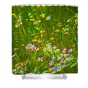 Wildflower Field Shower Curtain