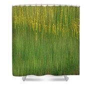 Wildflower Fields Abstract Shower Curtain