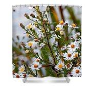 Wildflower,  Shower Curtain