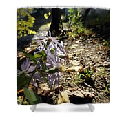 Wildflower Looker Shower Curtain