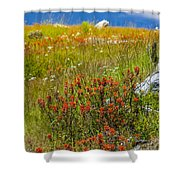 Wildflower Meadow With Indian Paintbrush Shower Curtain