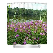 Wildflower Mornings Shower Curtain
